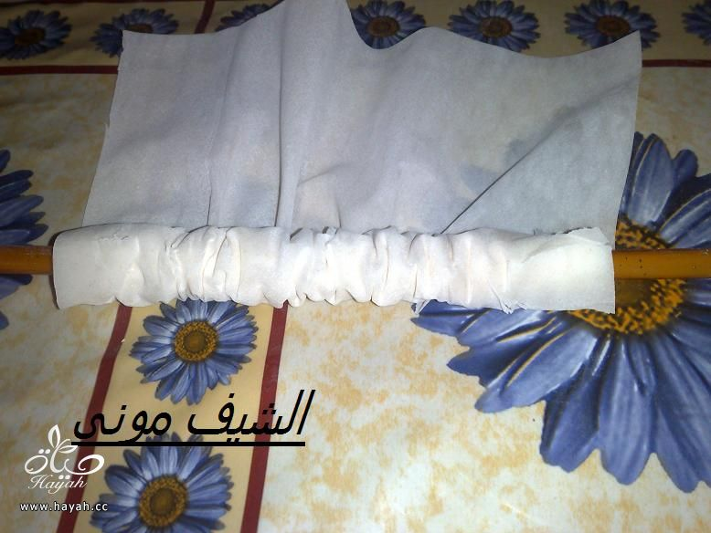 جلاش عش البلبل من مطبخ الشيف مونى بالصور hayahcc_1365108058_535.jpg