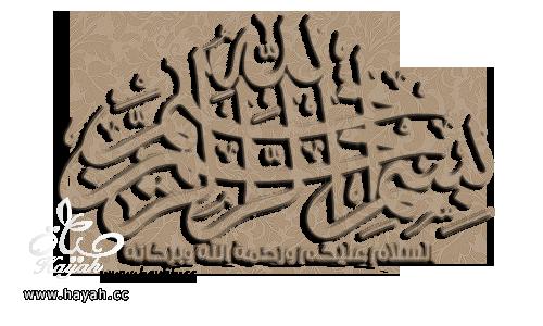 دورة اتقان المعجنات,الدرس السادس, عمل ضفيرة الجبن وفطائر الدجاج بالخطوات المصورة hayahcc_1365520220_998.png
