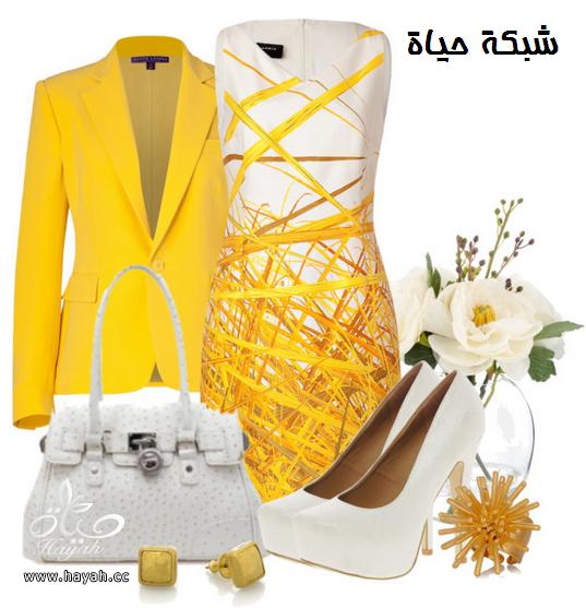 كولكشن ملابس واكسسواراتها لكل الاذواق hayahcc_1365691961_725.png