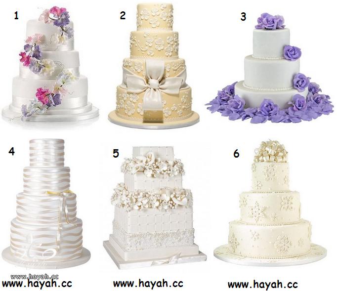 صور كيكات اعراس روعة - كيك زواج - كيك زواجات hayahcc_1365693611_305.png