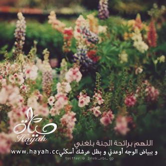 رمزيات واتس اب اسلامية تصميمي hayahcc_1366443847_297.png