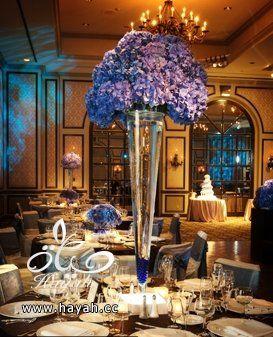 14 سنتربيس رائعة للأعراس hayahcc_1367275346_786.jpg