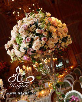 14 سنتربيس رائعة للأعراس hayahcc_1367275347_233.jpg