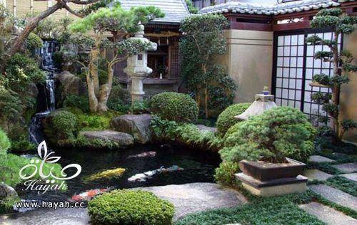 ديكورات حدائق منزلية لا مثيل لها بالصور حصريا hayahcc_1367584232_142.jpg