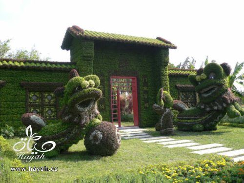 ديكورات حدائق منزلية لا مثيل لها بالصور حصريا hayahcc_1367584232_214.jpg