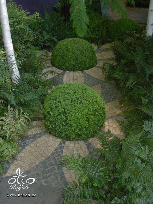 5f2155192 ديكورات حدائق منزلية لا مثيل لها بالصور حصريا hayahcc_1367584232_314.jpg