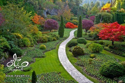 ديكورات حدائق منزلية لا مثيل لها بالصور حصريا hayahcc_1367584232_832.jpg