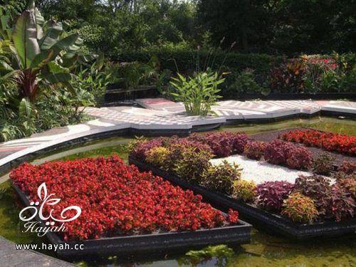 ديكورات حدائق منزلية لا مثيل لها بالصور حصريا hayahcc_1367584233_144.jpg