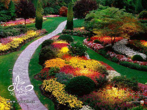 ديكورات حدائق منزلية لا مثيل لها بالصور حصريا hayahcc_1367584233_225.jpg