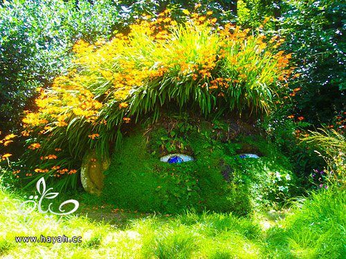 ديكورات حدائق منزلية لا مثيل لها بالصور حصريا hayahcc_1367584233_664.jpg