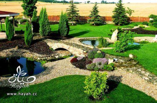 ديكورات حدائق منزلية لا مثيل لها بالصور حصريا hayahcc_1367584233_762.jpg