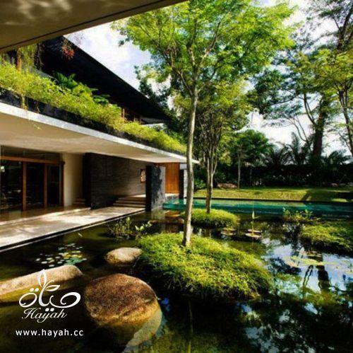 ديكورات حدائق منزلية لا مثيل لها بالصور حصريا hayahcc_1367584233_888.jpg