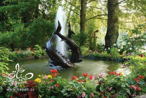 ديكورات حدائق منزلية لا مثيل لها بالصور حصريا hayahcc_1367584233_894.jpg