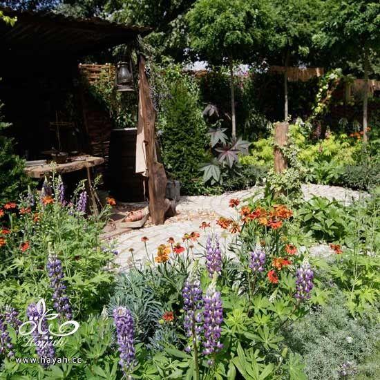 ديكورات حدائق منزلية لا مثيل لها بالصور حصريا hayahcc_1367584247_756.jpg