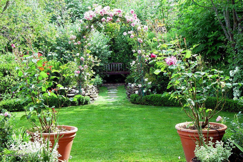صور حدائق منزلية جنان hayahcc_1367623892_352.jpg