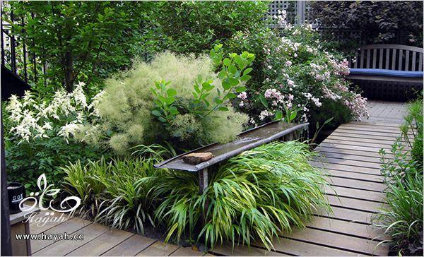 صور حدائق و مسابح منزلية في غاية الروعة hayahcc_1367624331_700.jpg