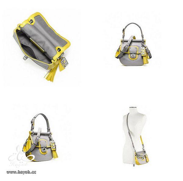 موديلات حقائب راقية hayahcc_1367761818_551.jpg