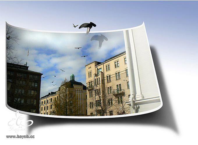 صور ثلاثیه الابعاد روعه hayahcc_1368118759_439.jpg
