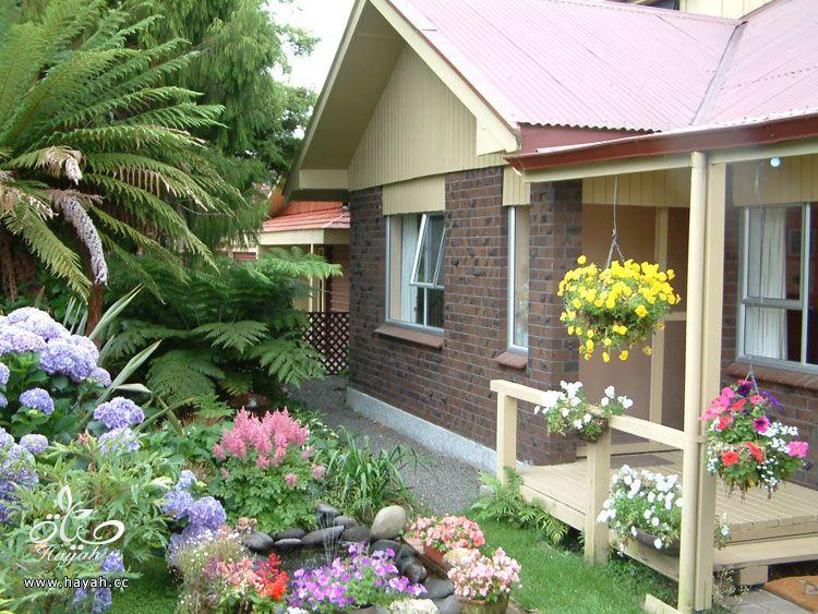 صور حدائق منزلية تجنن hayahcc_1368118775_823.jpg