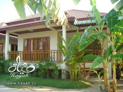 صور حدائق منزلية تجنن hayahcc_1368118776_339.jpg