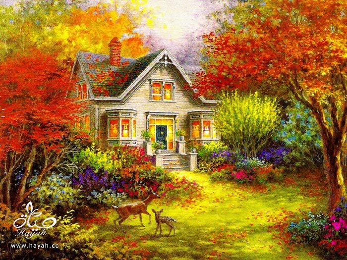 رسومات جمیله جدا hayahcc_1369412587_838.jpg