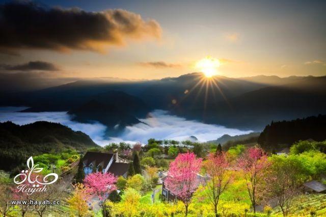 صور مدهشة من ناشونال جيوغرافيك  (35 صورة) hayahcc_1369584124_664.jpg