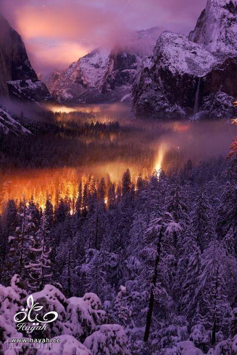 صور مدهشة من ناشونال جيوغرافيك  (35 صورة) hayahcc_1369584134_809.jpg