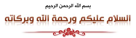 مجلة التطريز بشرائط الساتان hayahcc_1369924685_3