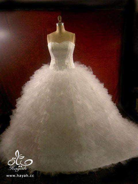 صور فساتين زفاف جديده روعه hayahcc_1370424667_946.jpg