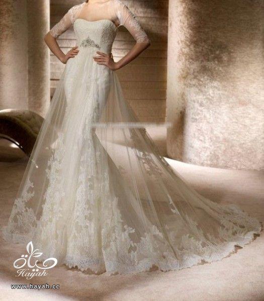 فساتين زفاف حديثة hayahcc_1372270973_268.jpg