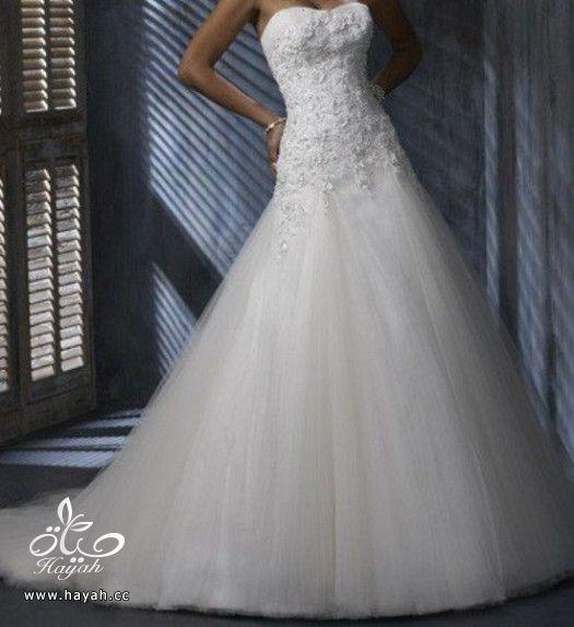 فساتين زفاف حديثة hayahcc_1372270974_396.jpg