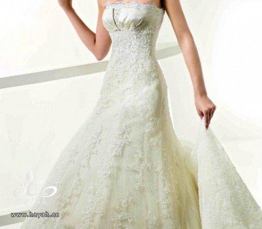فساتين زفاف حديثة hayahcc_1372270975_301.jpg