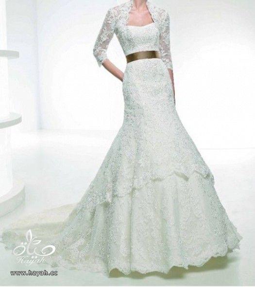 فساتين زفاف حديثة hayahcc_1372270976_366.jpg