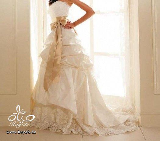 فساتين زفاف حديثة hayahcc_1372270978_608.jpg