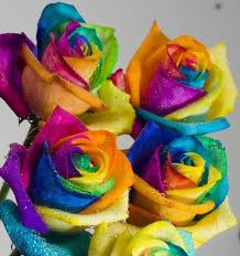 اسرار ولغة الورود hayahcc_1372995015_899.jpg