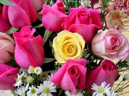 اسرار ولغة الورود hayahcc_1372995016_759.jpg