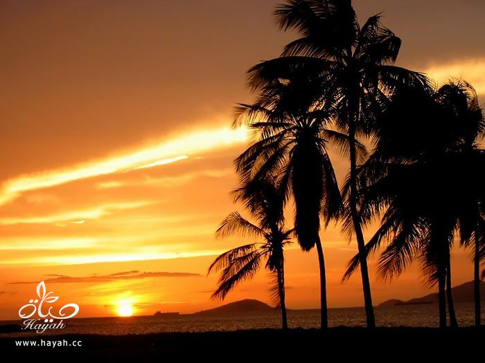 طلوع وغروب الشمس hayahcc_1374850042_287.jpg