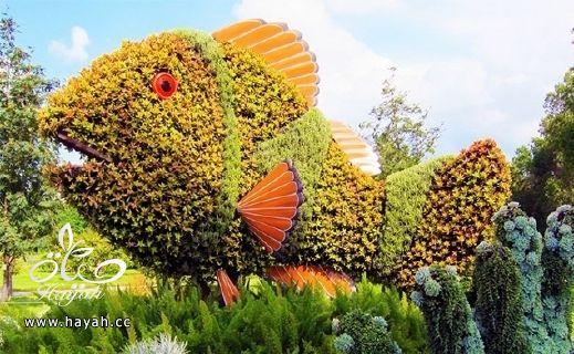 مجسمات رائعة من نباتات طبيعيه في كندا hayahcc_1377371003_781.jpg