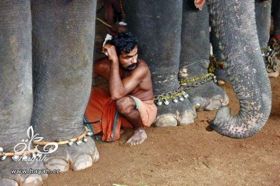 فقط فی الهند hayahcc_1377619682_868.jpg