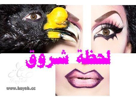 صور مكياج عيون جديدة hayahcc_1378477658_549.jpg