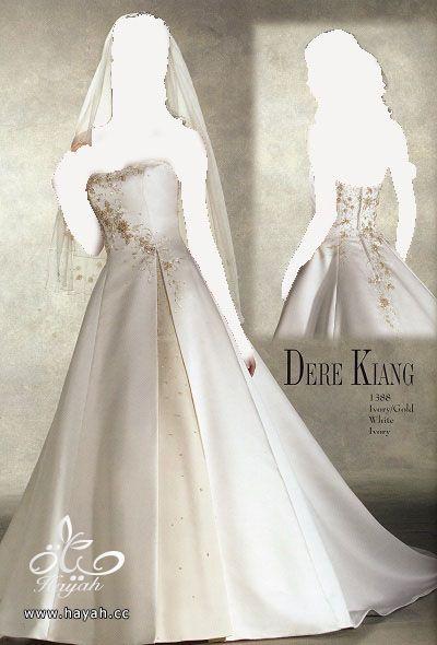اجمل فساتين زفاف عالمية 2014 , صور فساتين عالمية للزفاف 2014 hayahcc_1378935886_178.jpg