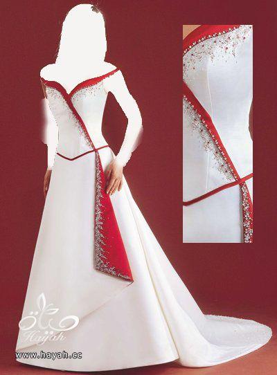 اجمل فساتين زفاف عالمية 2014 , صور فساتين عالمية للزفاف 2014 hayahcc_1378935886_332.jpg