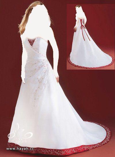 اجمل فساتين زفاف عالمية 2014 , صور فساتين عالمية للزفاف 2014 hayahcc_1378935886_460.jpg