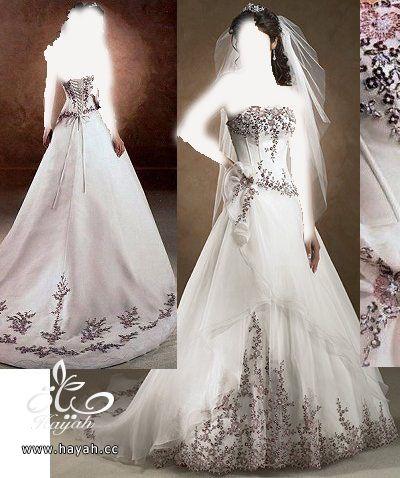 اجمل فساتين زفاف عالمية 2014 , صور فساتين عالمية للزفاف 2014 hayahcc_1378935886_474.jpg
