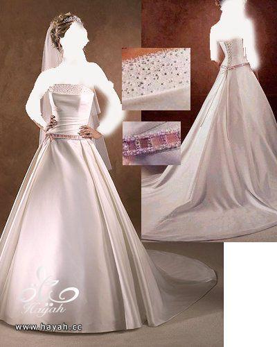 اجمل فساتين زفاف عالمية 2014 , صور فساتين عالمية للزفاف 2014 hayahcc_1378935886_664.jpg