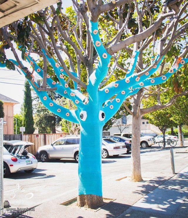 تزيين شجرة بالصوف! hayahcc_1382654949_805.jpg