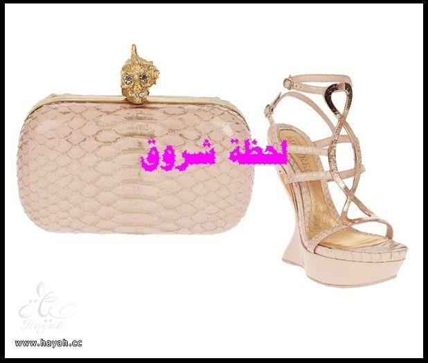مجموعة متنوعة من  مجوهرات و أحذية  وشنط hayahcc_1385484302_388.jpg