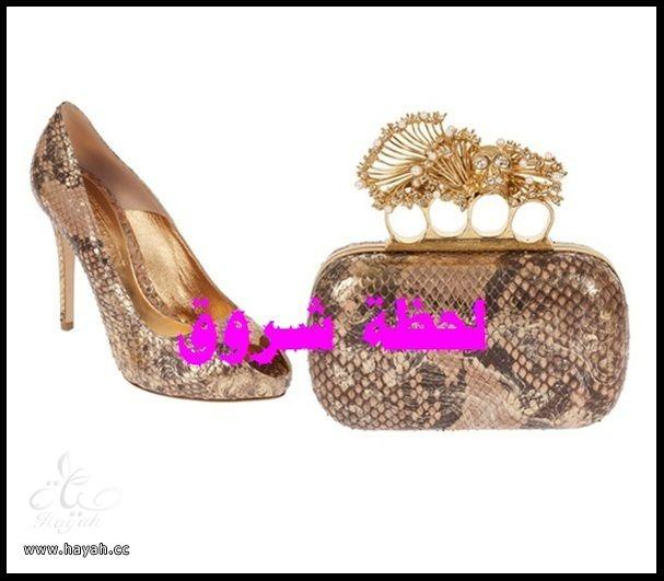 مجموعة متنوعة من  مجوهرات و أحذية  وشنط hayahcc_1385484302_887.jpg