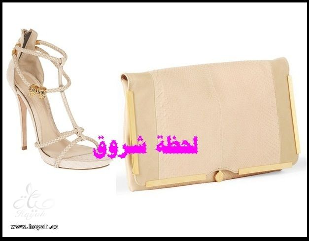مجموعة متنوعة من  مجوهرات و أحذية  وشنط hayahcc_1385484303_333.jpg