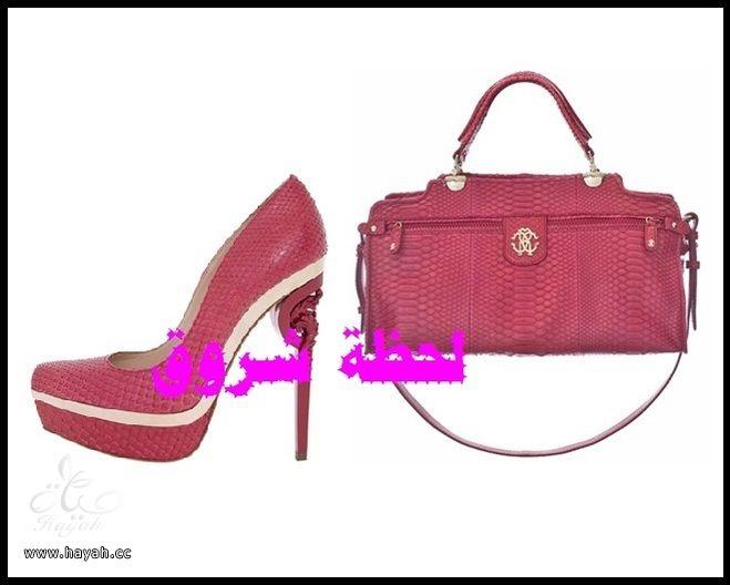 مجموعة متنوعة من  مجوهرات و أحذية  وشنط hayahcc_1385484303_813.jpg